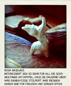 ROSA_NASEWEIS